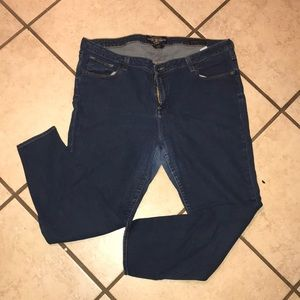 Lucky Brand Ankle Ginger Skinny Jeans Plus Size 22